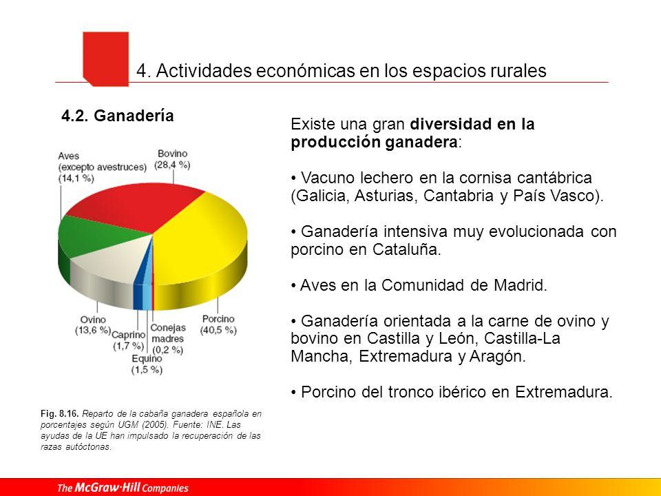 4. Actividades económicas en los espacios rurales 4.2. Ganadería Fig. 8.16. Reparto de la cabaña ganadera española en porcentajes según UGM (2005). Fu