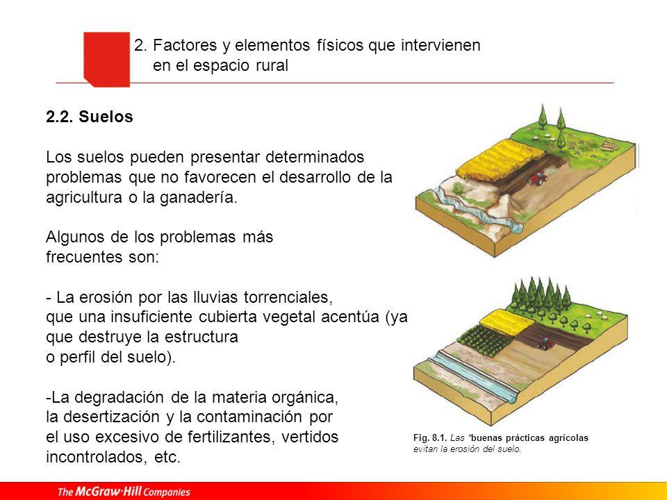 2. Factores y elementos físicos que intervienen en el espacio rural 2.2. Suelos Los suelos pueden presentar determinados problemas que no favorecen el
