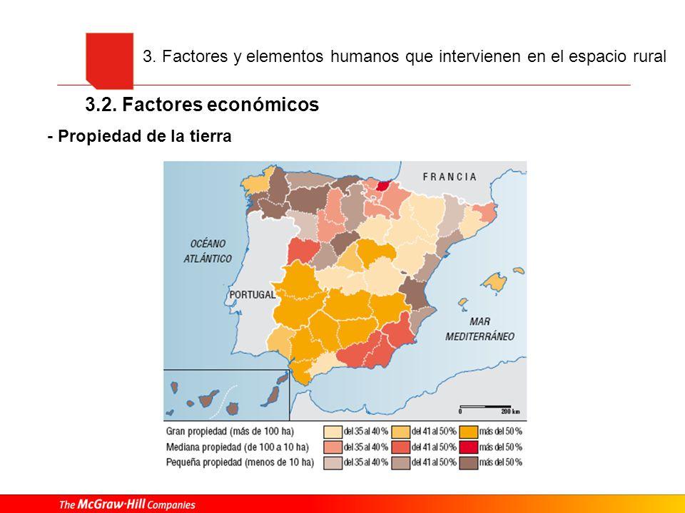 - Propiedad de la tierra 3. Factores y elementos humanos que intervienen en el espacio rural 3.2. Factores económicos