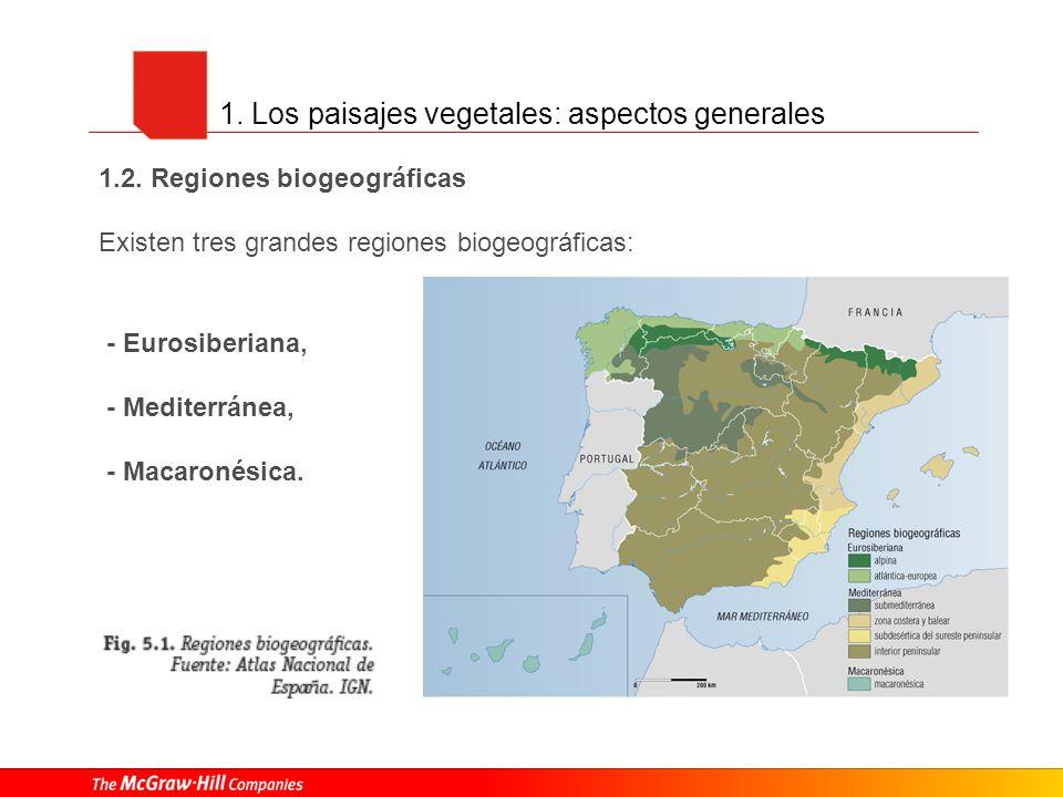 1. Los paisajes vegetales: aspectos generales - Eurosiberiana, - Mediterránea, - Macaronésica. 1.2. Regiones biogeográficas Existen tres grandes regio