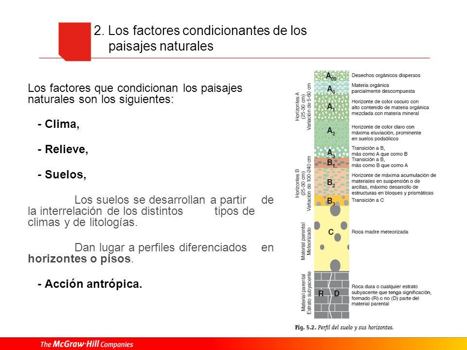 2. Los factores condicionantes de los paisajes naturales Los factores que condicionan los paisajes naturales son los siguientes: - Clima, - Relieve, -