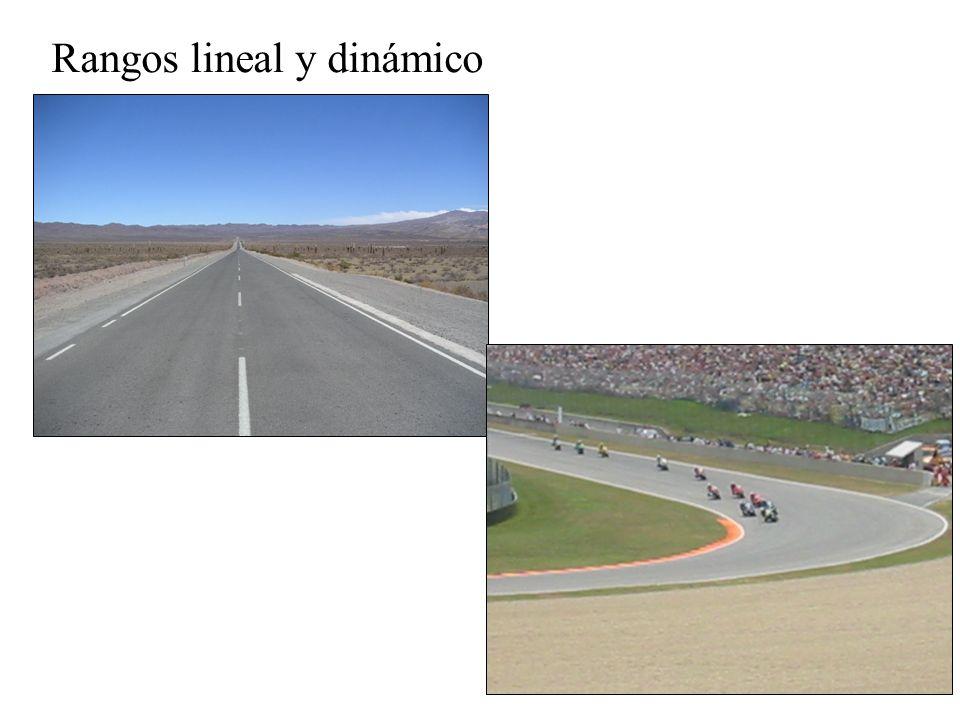 Rangos lineal y dinámico