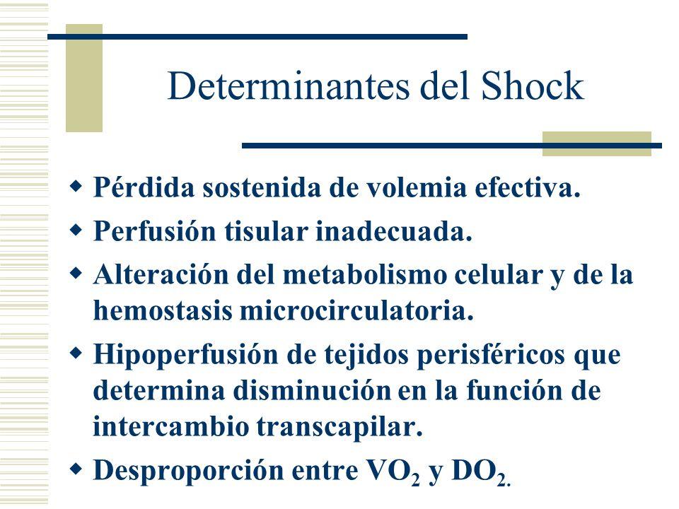 Determinantes del Shock Pérdida sostenida de volemia efectiva. Perfusión tisular inadecuada. Alteración del metabolismo celular y de la hemostasis mic