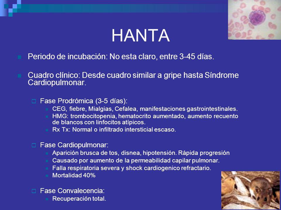 HANTA Periodo de incubación: No esta claro, entre 3-45 días. Cuadro clínico: Desde cuadro similar a gripe hasta Síndrome Cardiopulmonar. Fase Prodrómi