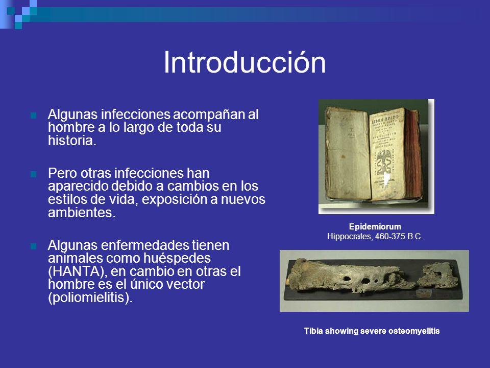 Introducción Algunas infecciones acompañan al hombre a lo largo de toda su historia. Pero otras infecciones han aparecido debido a cambios en los esti