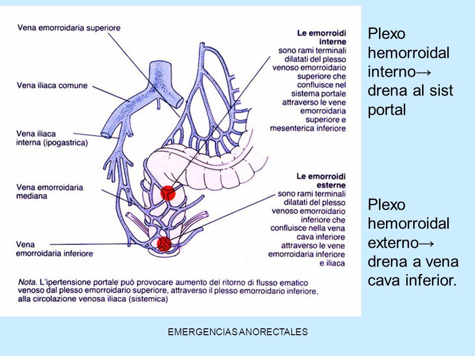 EMERGENCIAS ANORECTALES Plexo hemorroidal interno drena al sist portal Plexo hemorroidal externo drena a vena cava inferior.