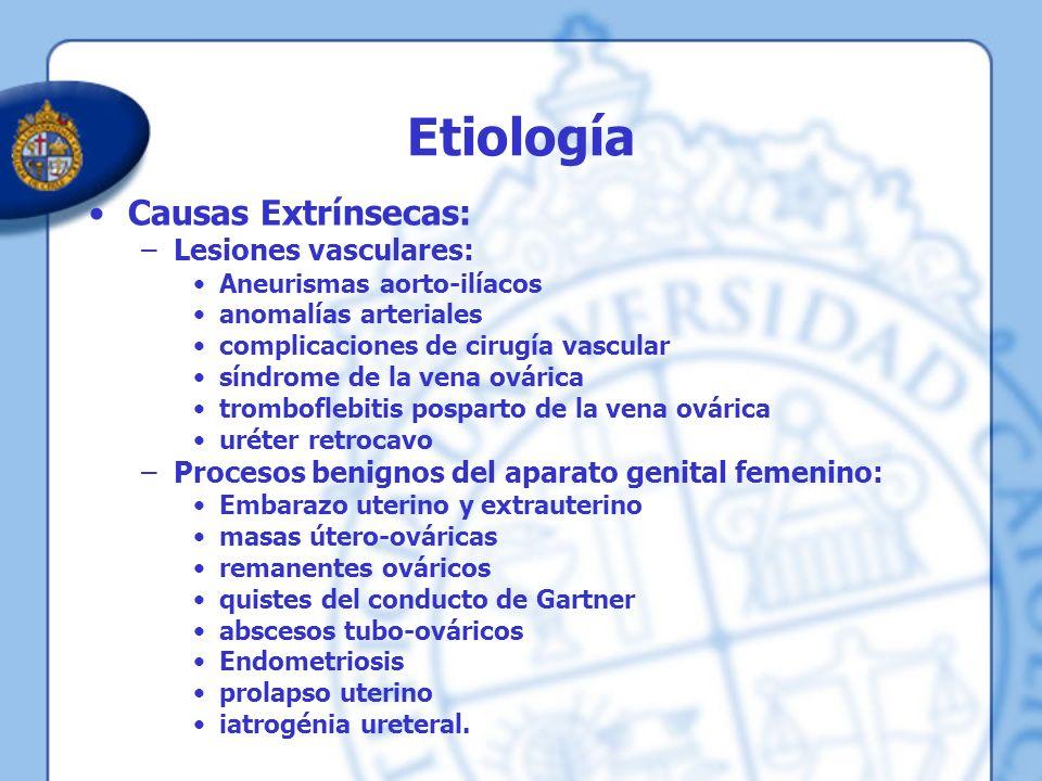 Etiología Causas Extrínsecas: –Tumores malignos Vesico-prostáticos del hombre Cervico-útero-ováricos en la mujer.