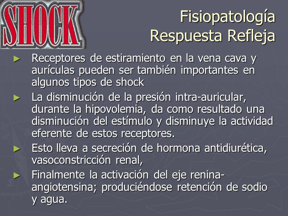 Fisiopatología Respuesta Refleja Receptores de estiramiento en la vena cava y aurículas pueden ser también importantes en algunos tipos de shock Recep
