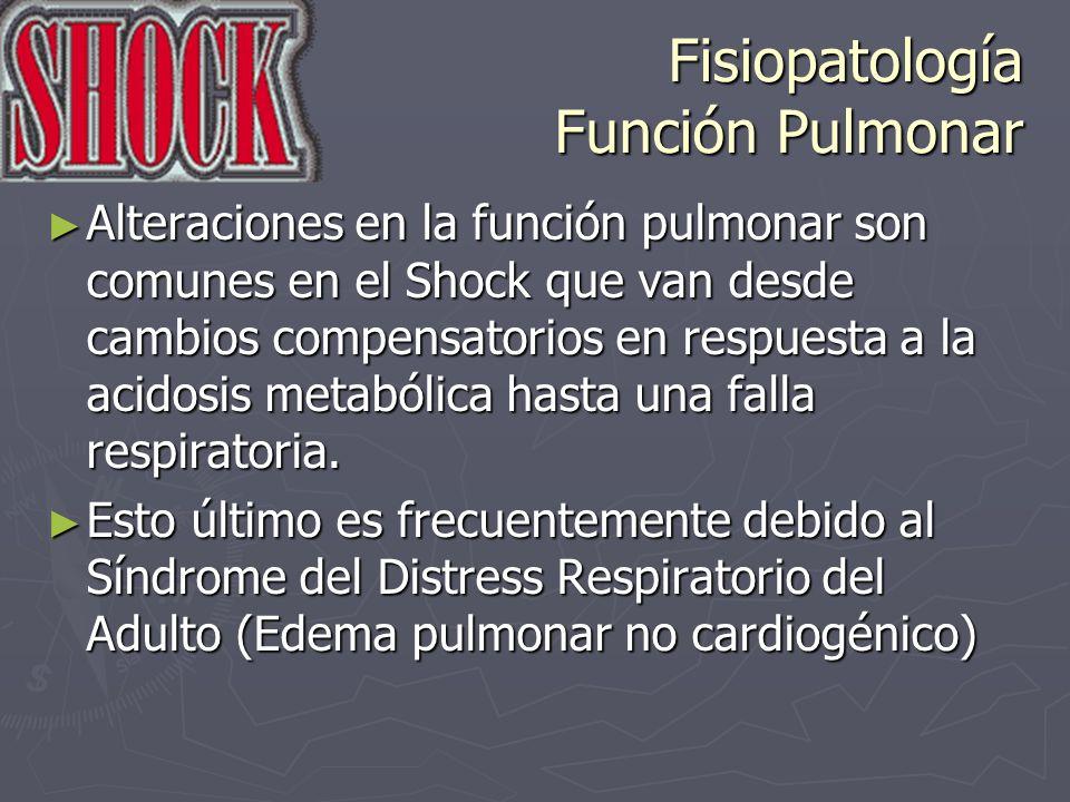 Fisiopatología Función Pulmonar Alteraciones en la función pulmonar son comunes en el Shock que van desde cambios compensatorios en respuesta a la aci
