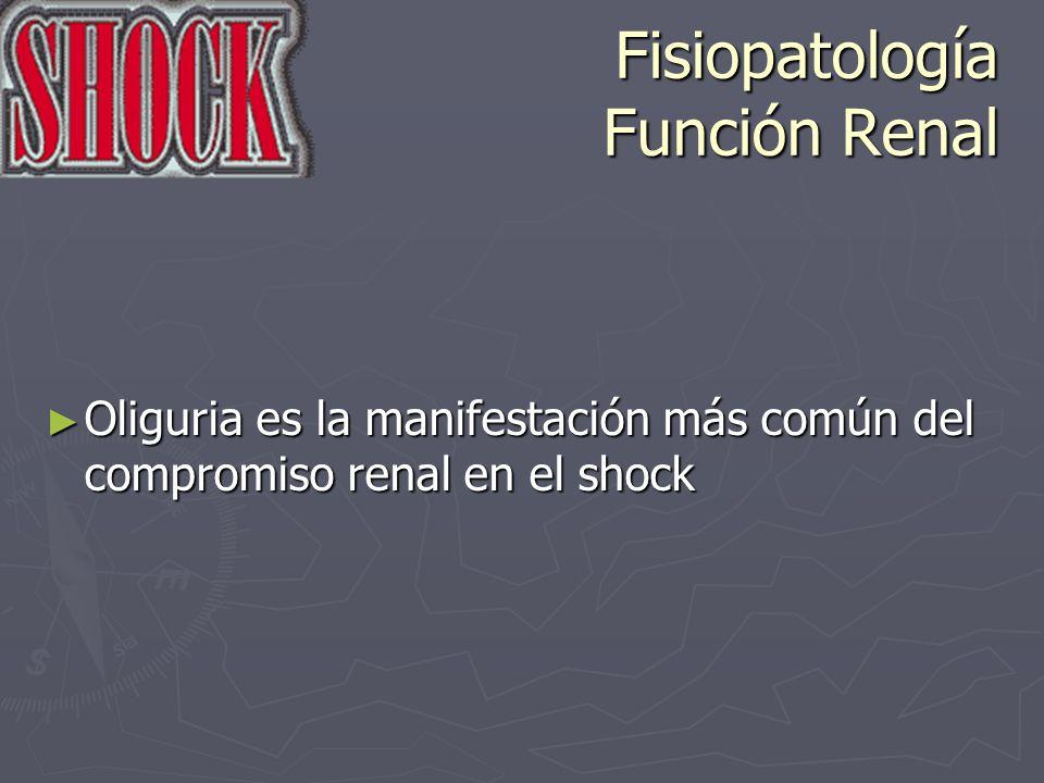 Fisiopatología Función Renal Oliguria es la manifestación más común del compromiso renal en el shock Oliguria es la manifestación más común del compro