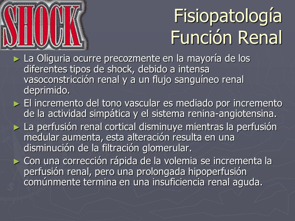 Fisiopatología Función Renal La Oliguria ocurre precozmente en la mayoría de los diferentes tipos de shock, debido a intensa vasoconstricción renal y