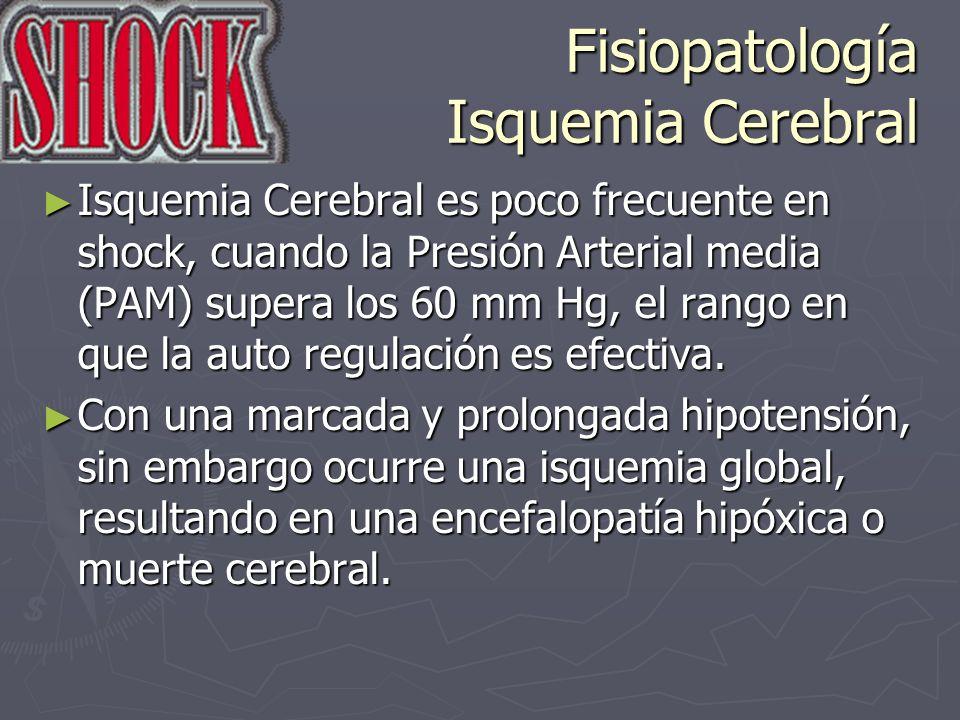 Fisiopatología Isquemia Cerebral Isquemia Cerebral es poco frecuente en shock, cuando la Presión Arterial media (PAM) supera los 60 mm Hg, el rango en