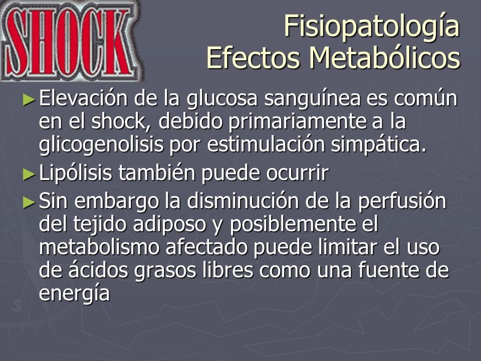 Fisiopatología Efectos Metabólicos Elevación de la glucosa sanguínea es común en el shock, debido primariamente a la glicogenolisis por estimulación s