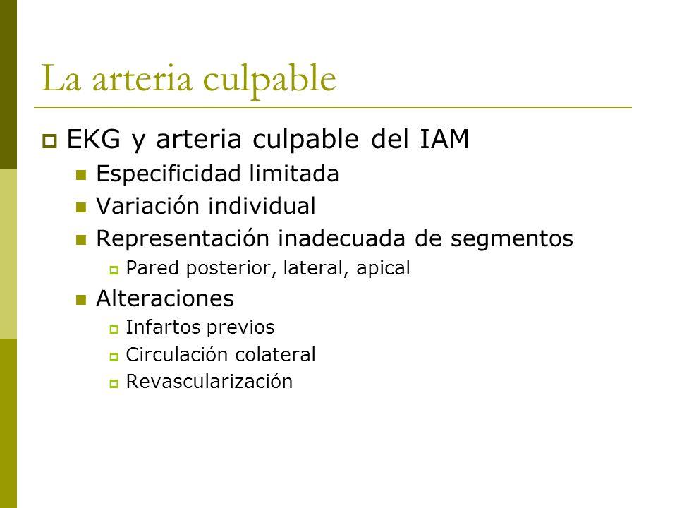 La arteria culpable EKG y arteria culpable del IAM Especificidad limitada Variación individual Representación inadecuada de segmentos Pared posterior,