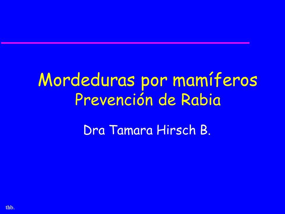 thb. Mordeduras por mamíferos Prevención de Rabia Dra Tamara Hirsch B.