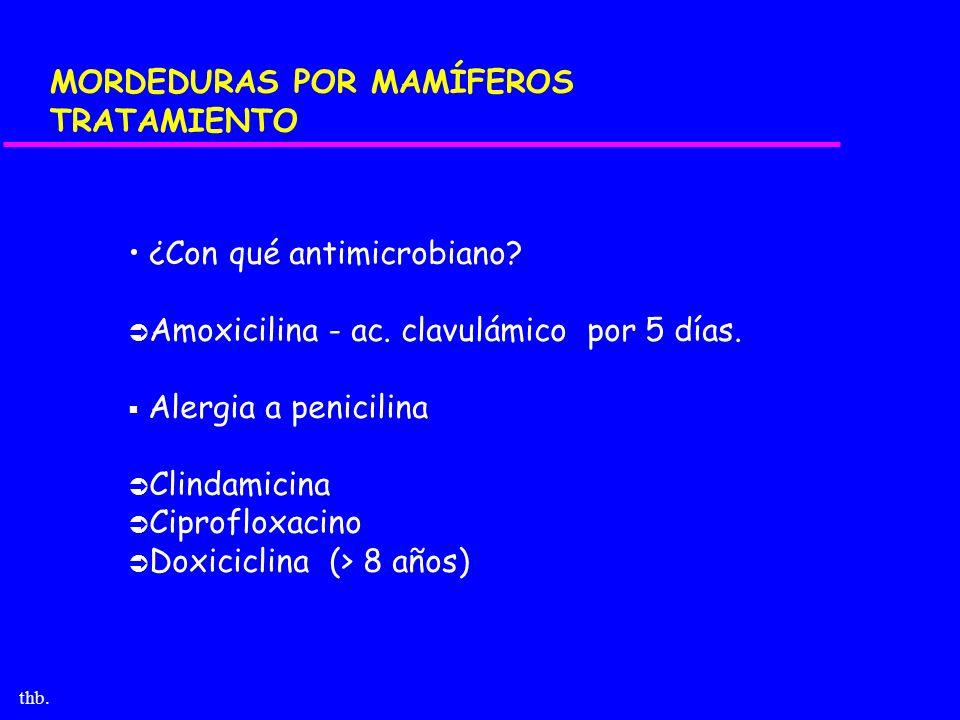 thb. MORDEDURAS POR MAMÍFEROS TRATAMIENTO ¿Con qué antimicrobiano? Amoxicilina - ac. clavulámico por 5 días. Alergia a penicilina Clindamicina Ciprofl