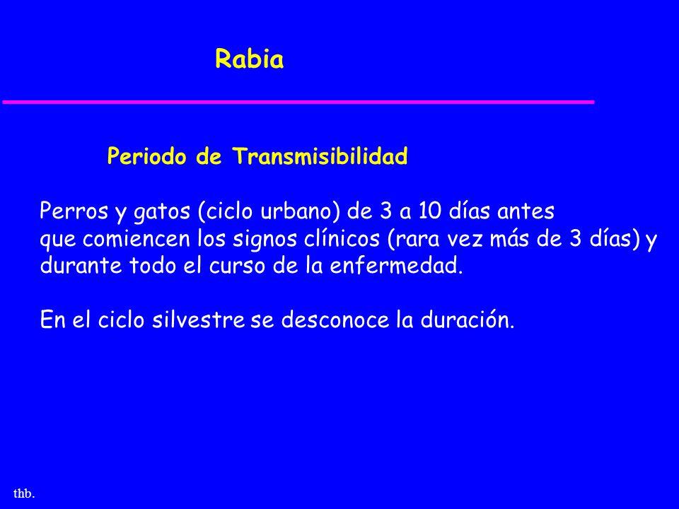 thb. Rabia Periodo de Transmisibilidad Perros y gatos (ciclo urbano) de 3 a 10 días antes que comiencen los signos clínicos (rara vez más de 3 días) y