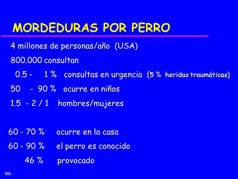 thb. MORDEDURAS POR PERRO 4 millones de personas/año (USA) 800.000 consultan 0.5 - 1 % consultas en urgencia ( 5 % heridas traumáticas) 50 - 90 % ocur