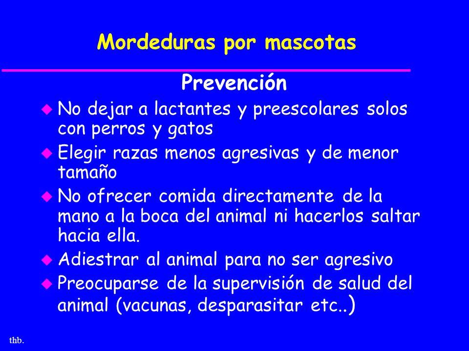 thb. Mordeduras por mascotas Prevención u No dejar a lactantes y preescolares solos con perros y gatos u Elegir razas menos agresivas y de menor tamañ