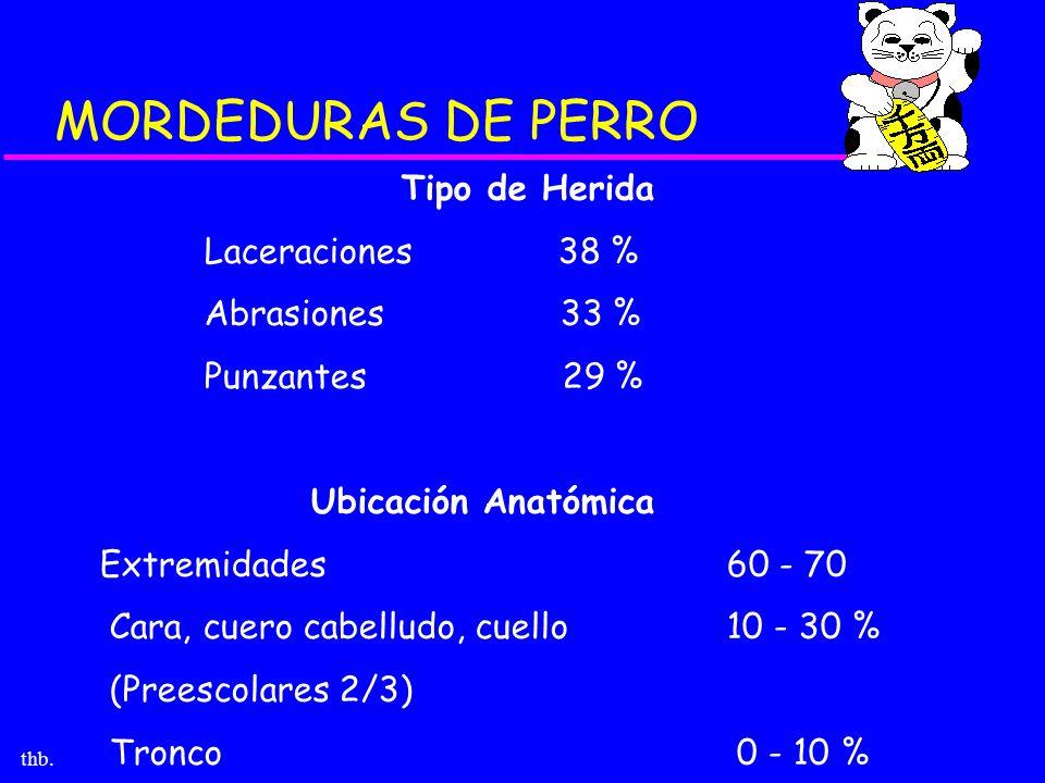 thb. MORDEDURAS DE PERRO Tipo de Herida Laceraciones 38 % Abrasiones 33 % Punzantes 29 % Ubicación Anatómica Extremidades60 - 70 Cara, cuero cabelludo