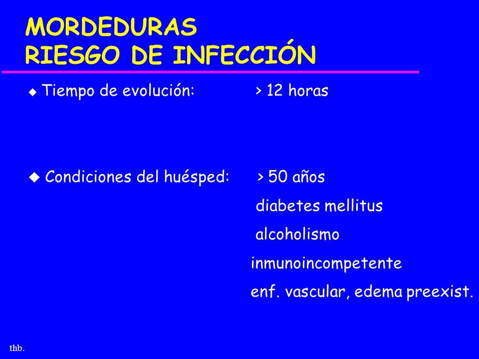 thb. MORDEDURAS RIESGO DE INFECCIÓN u Tiempo de evolución: > 12 horas u Condiciones del huésped: > 50 años diabetes mellitus alcoholismo inmunoincompe