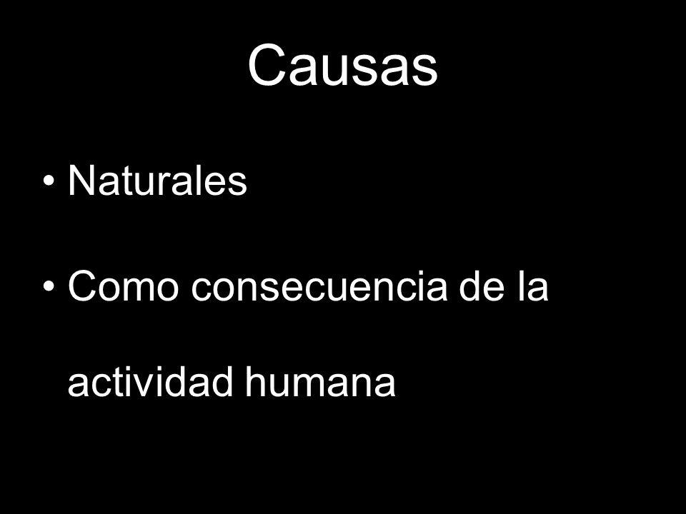 Causas Naturales Como consecuencia de la actividad humana