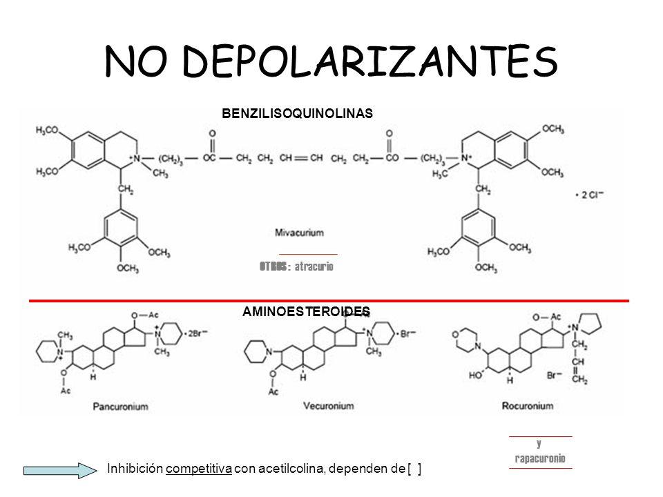 NO DEPOLARIZANTES Inhibición competitiva con acetilcolina, dependen de [ ] OTROS : atracurio BENZILISOQUINOLINAS AMINOESTEROIDES y rapacuronio
