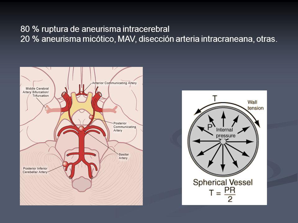 80 % ruptura de aneurisma intracerebral 20 % aneurisma micótico, MAV, disección arteria intracraneana, otras.