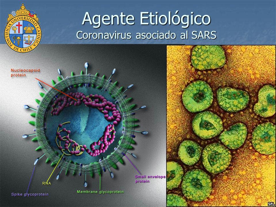 J S M Peiris, S T Lai et al The Lancet 8 abril 2003)