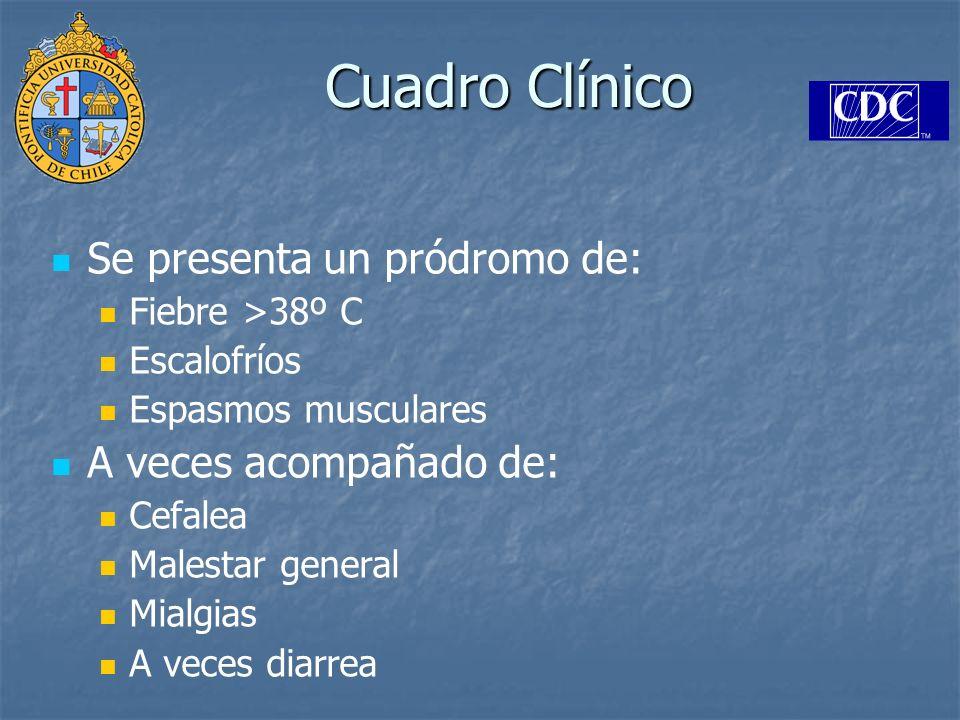 Cuadro Clínico Se presenta un pródromo de: Fiebre >38º C Escalofríos Espasmos musculares A veces acompañado de: Cefalea Malestar general Mialgias A ve