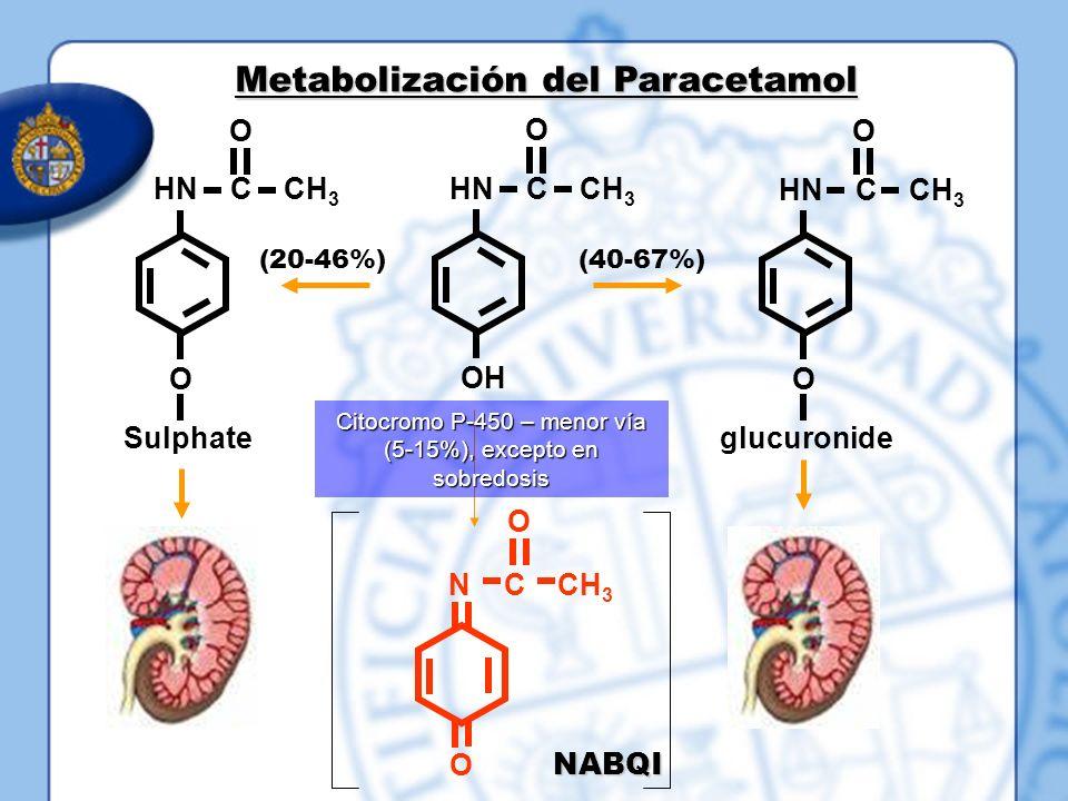 OH HN C CH 3 O O O Sulphate O HN C CH 3 O glucuronide (20-46%)(40-67%) Citocromo P-450 – menor vía (5-15%), excepto en sobredosis Metabolización del P
