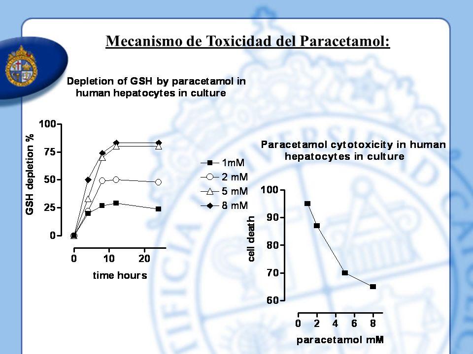 Mecanismo de Toxicidad del Paracetamol: