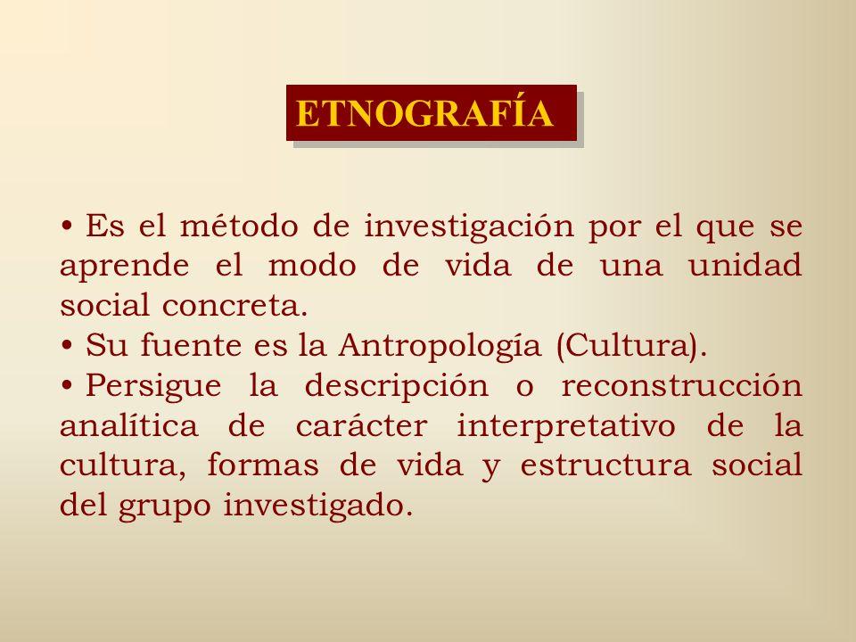 TÉCNICAS ESPECÍFICAS (Morse y Field, 1995) 1.Rastreo de las fuentes etimológicas. 2.La búsqueda de frases idiosincráticas o modismos. 3.La obtención d