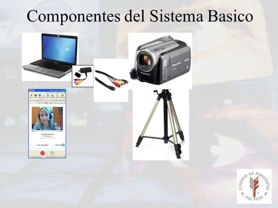 Componentes del Sistema Basico