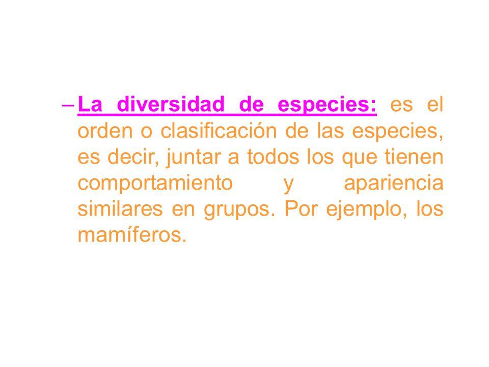–La diversidad de especies: es el orden o clasificación de las especies, es decir, juntar a todos los que tienen comportamiento y apariencia similares