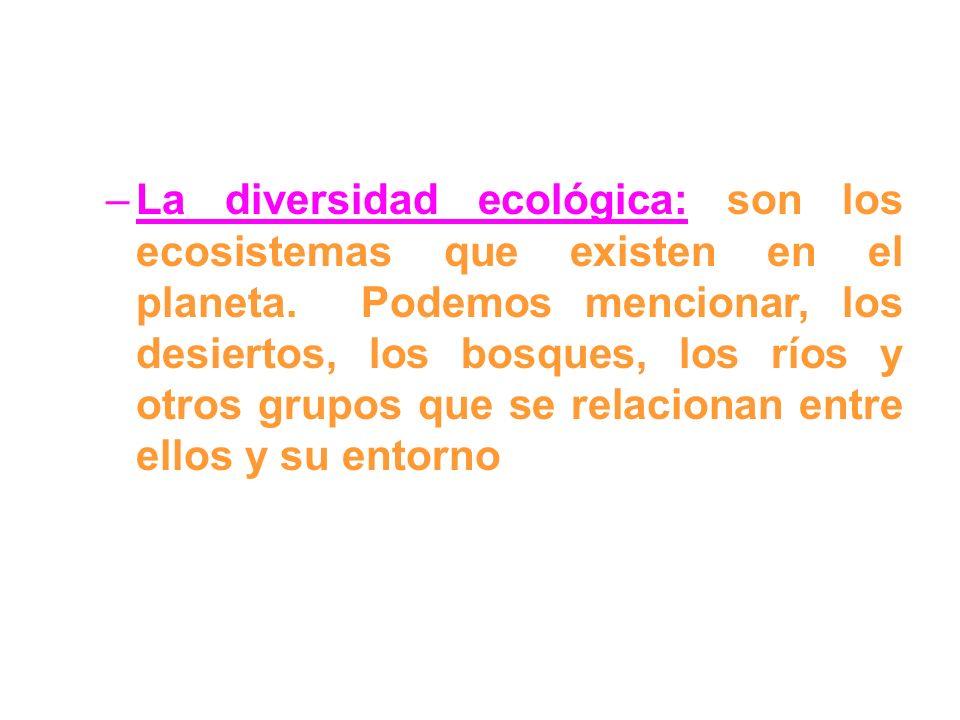 –La diversidad ecológica: son los ecosistemas que existen en el planeta. Podemos mencionar, los desiertos, los bosques, los ríos y otros grupos que se