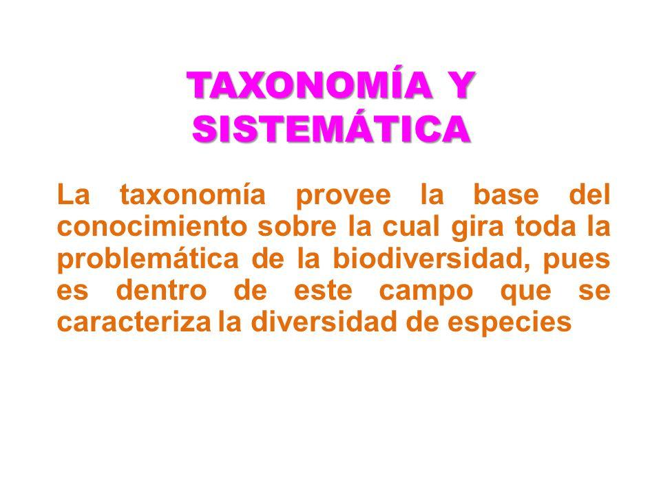 TAXONOMÍA Y SISTEMÁTICA La taxonomía provee la base del conocimiento sobre la cual gira toda la problemática de la biodiversidad, pues es dentro de es