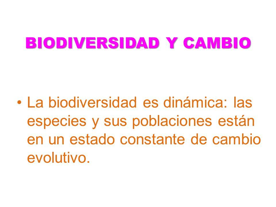 BIODIVERSIDAD Y CAMBIO La biodiversidad es dinámica: las especies y sus poblaciones están en un estado constante de cambio evolutivo.