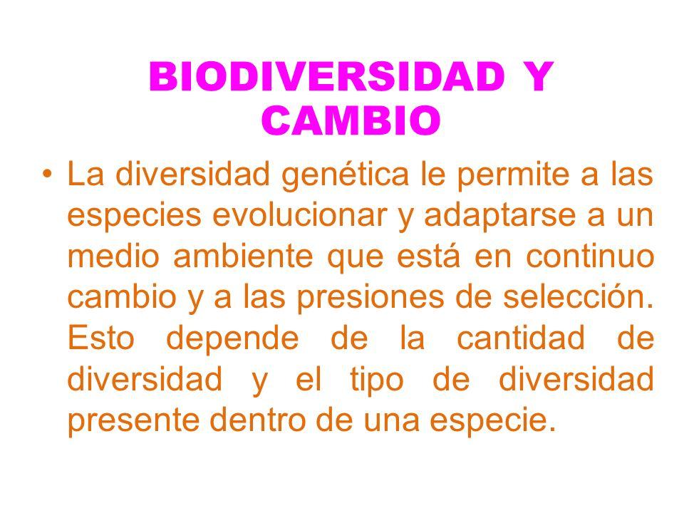 La diversidad genética le permite a las especies evolucionar y adaptarse a un medio ambiente que está en continuo cambio y a las presiones de selecció
