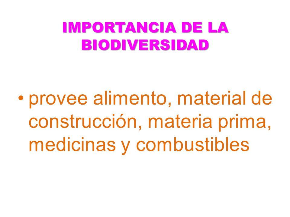 IMPORTANCIA DE LA BIODIVERSIDAD provee alimento, material de construcción, materia prima, medicinas y combustibles