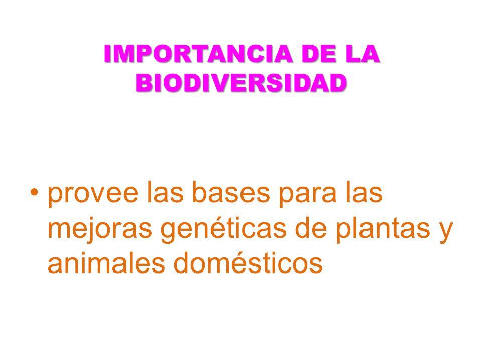 provee las bases para las mejoras genéticas de plantas y animales domésticos
