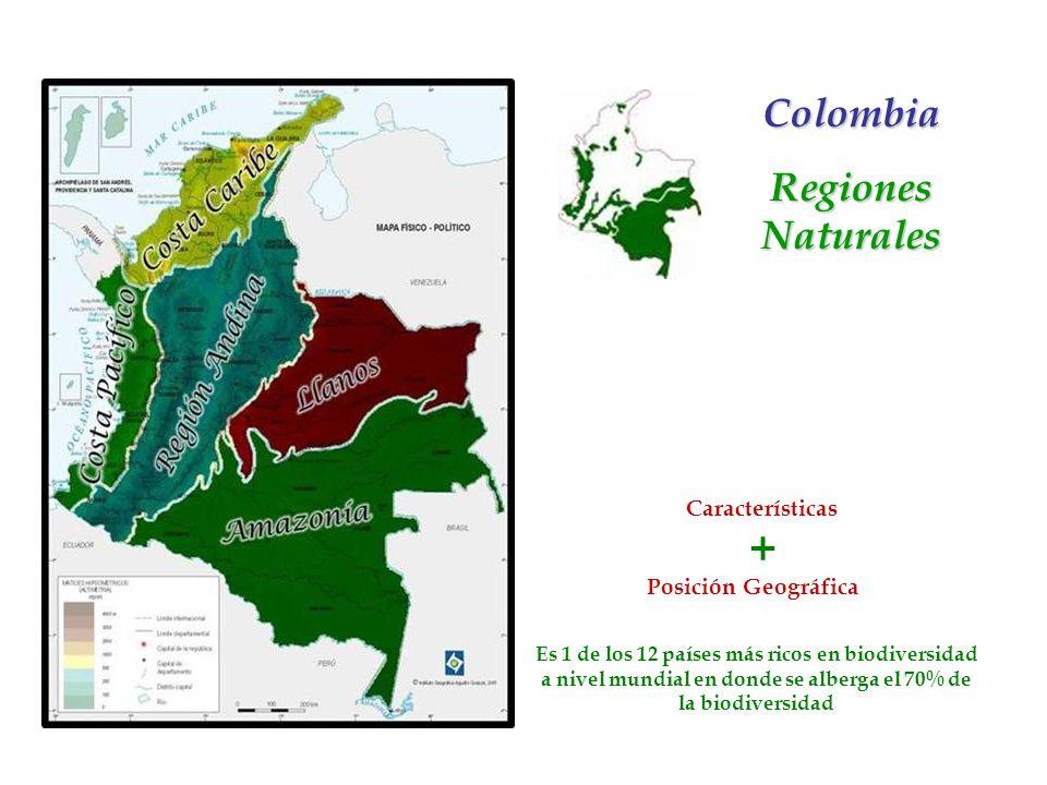 Cada una de las regiones del país se subdivide en subregiones, las cuales poseen características propias en cuanto a la estructura económica, social y