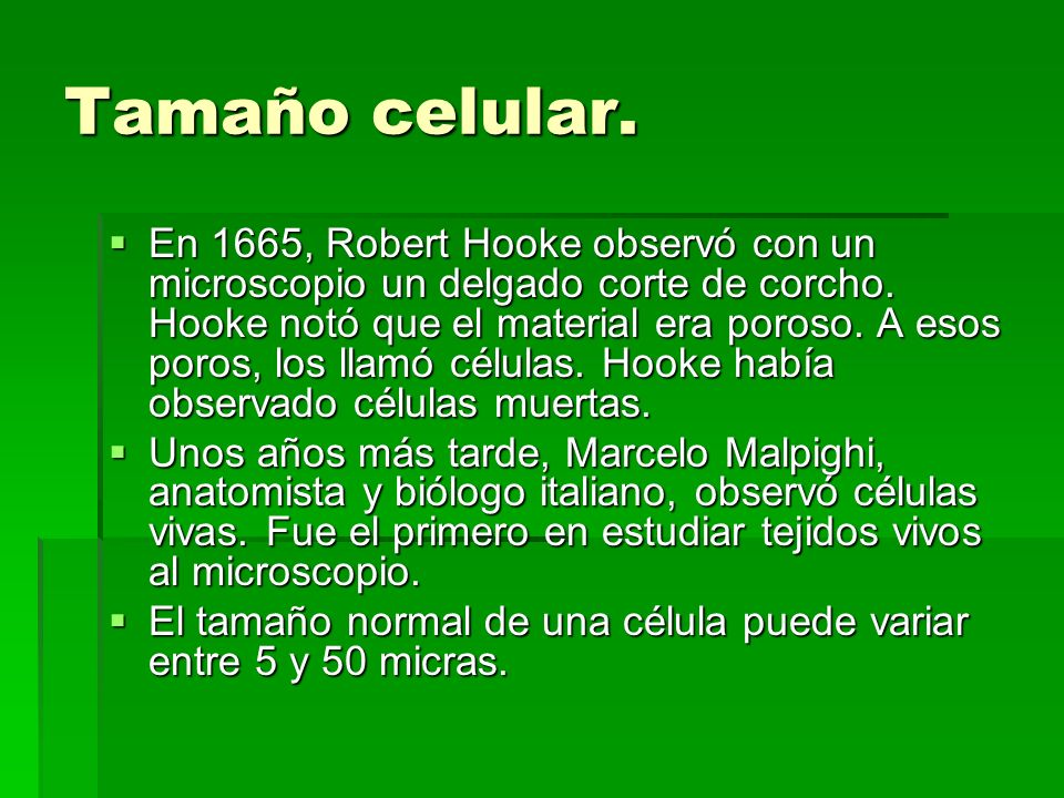 Cloroplastos.Los cloroplastos son orgánulos exclusivos de las células vegetales.