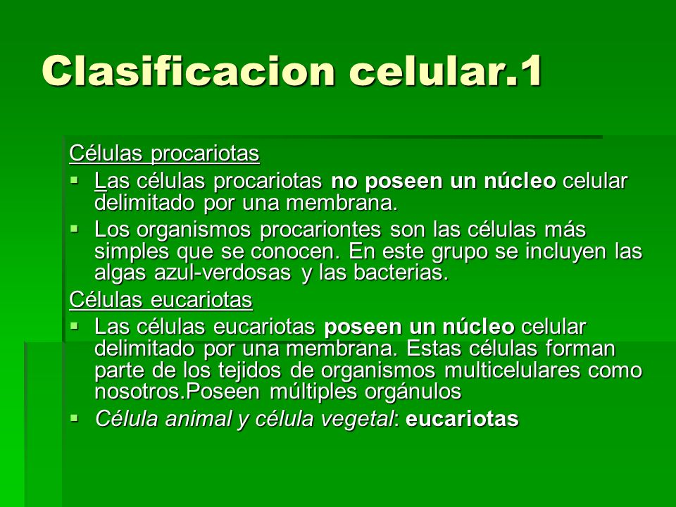 Clasificacion celular.1 Células procariotas Las células procariotas no poseen un núcleo celular delimitado por una membrana. Las células procariotas n
