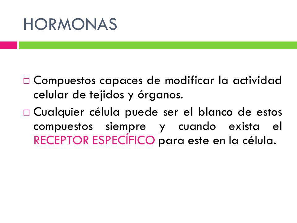 HORMONAS Lipófilas Hidrófilas La transmisión de las señales hormonales a la célula difiere según el tipo de hormona