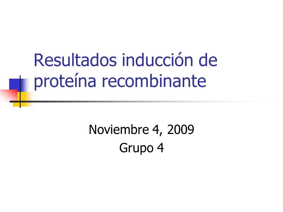 Resultados inducción de proteína recombinante Noviembre 4, 2009 Grupo 4