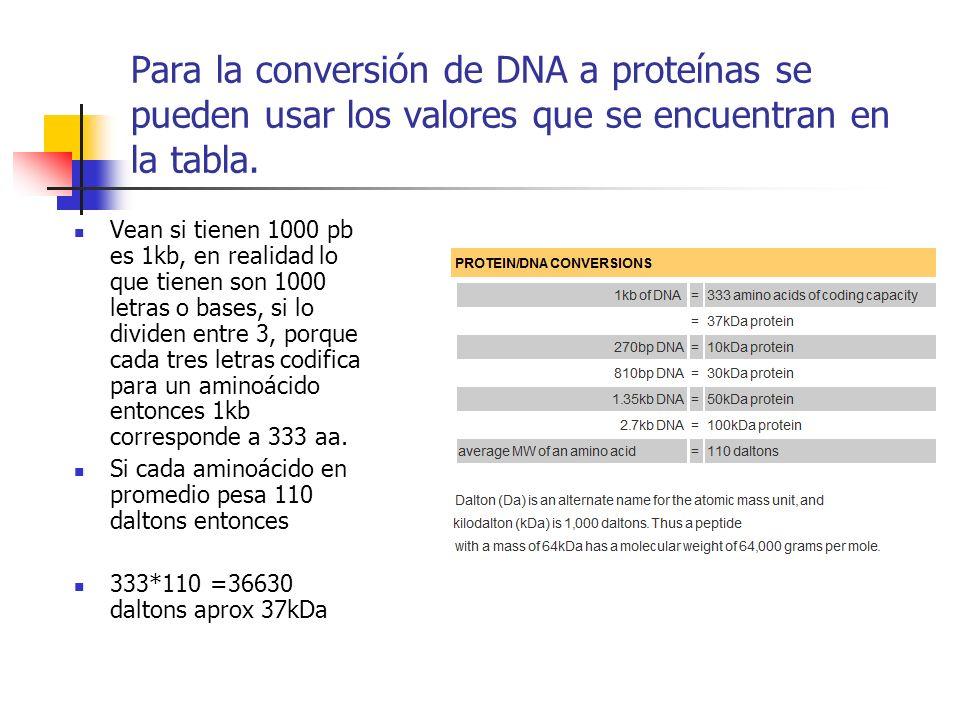 Para la conversión de DNA a proteínas se pueden usar los valores que se encuentran en la tabla. Vean si tienen 1000 pb es 1kb, en realidad lo que tien