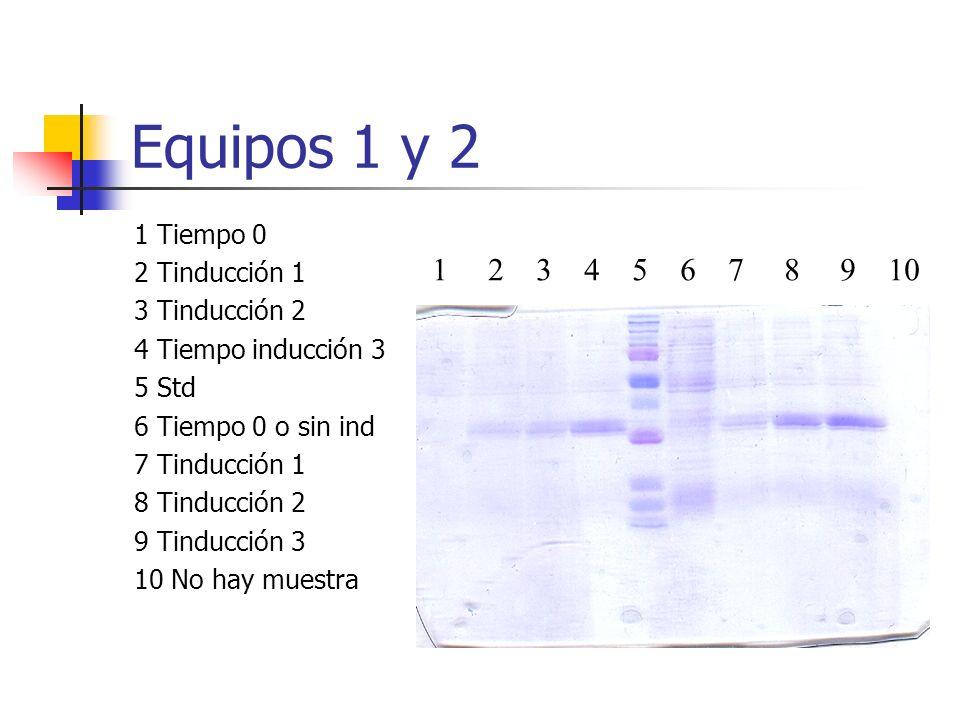 Equipos 1 y 2 1 Tiempo 0 2 Tinducción 1 3 Tinducción 2 4 Tiempo inducción 3 5 Std 6 Tiempo 0 o sin ind 7 Tinducción 1 8 Tinducción 2 9 Tinducción 3 10