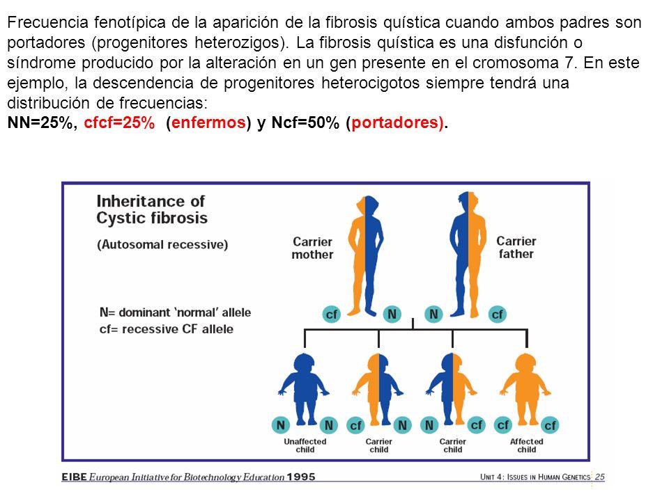autosómico recesivo Si la mujer es heterocigota para el alelo mutante el 50% de sus hijos heredarán y expresarán la característica mientras que el 50%