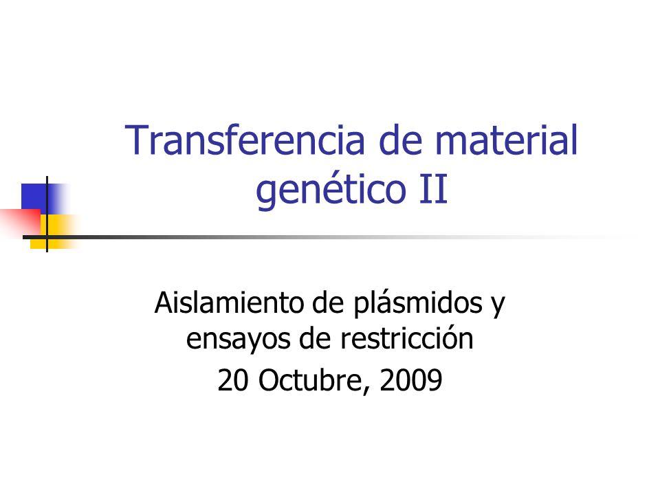 Transferencia de material genético II Aislamiento de plásmidos y ensayos de restricción 20 Octubre, 2009